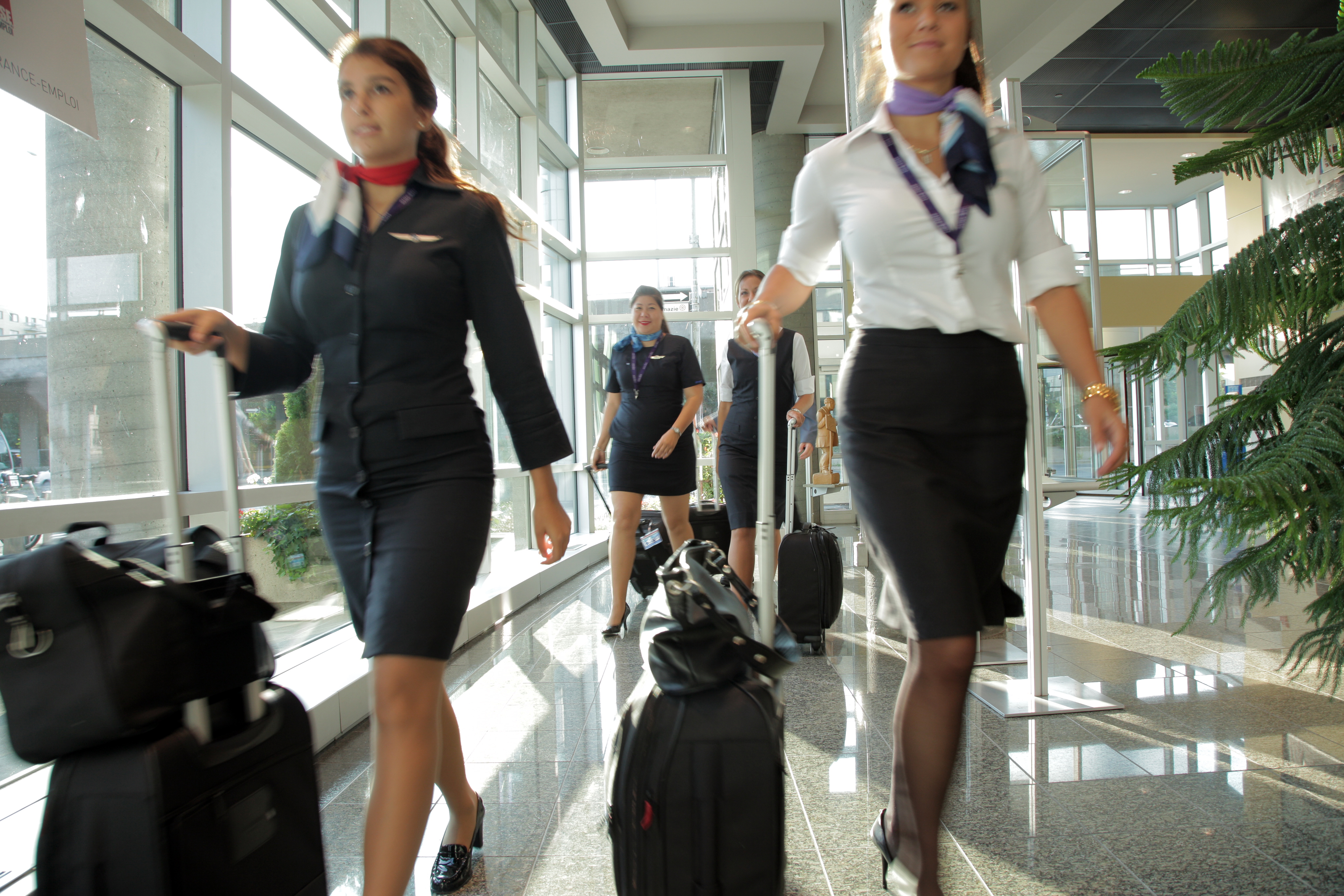 Four female flight attendants walking down a sunlit hallway with suitcases